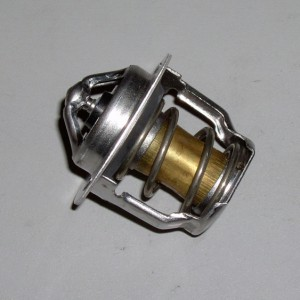 Kubota v1505 Thermostat